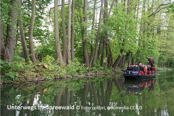 Spreewald & Oberlausitzer Seenland